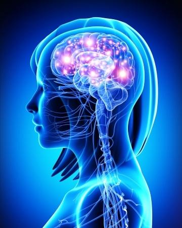 mind-image